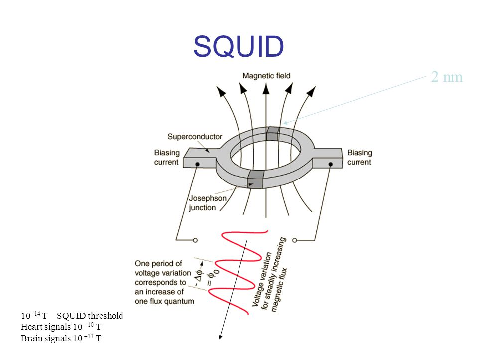 SQUID 2 nm 10-14 T SQUID threshold Heart signals 10 -10 T