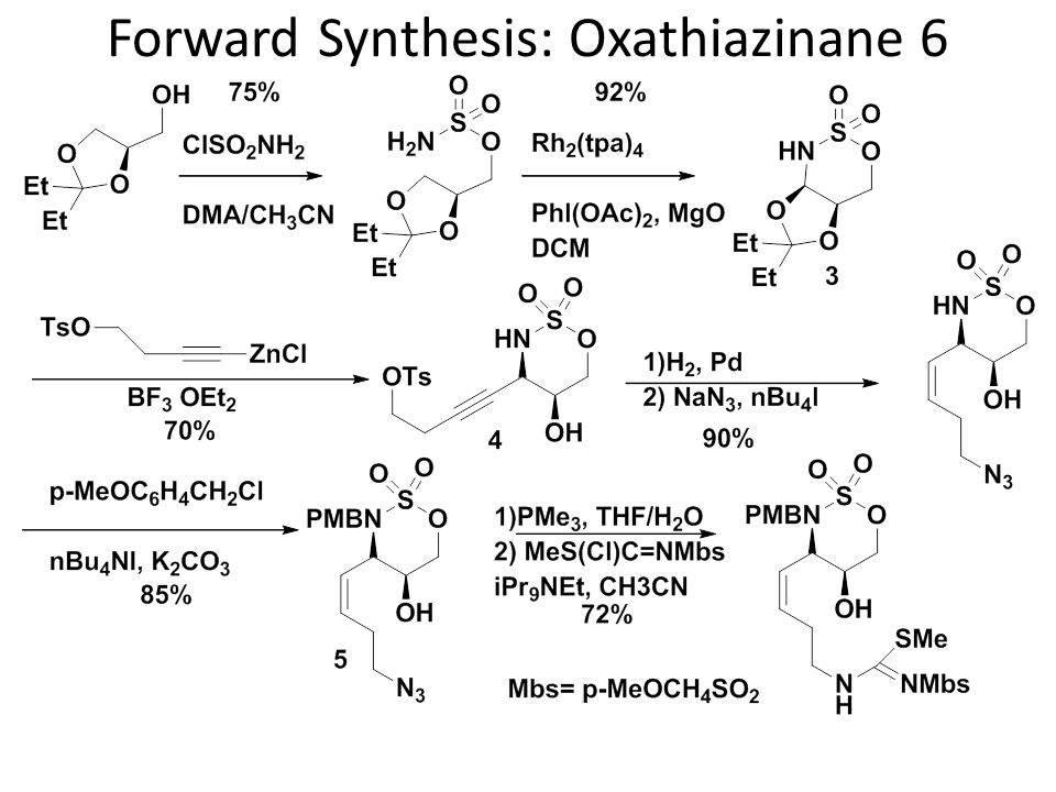 Forward Synthesis: Oxathiazinane 6