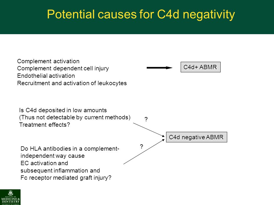 Potential causes for C4d negativity