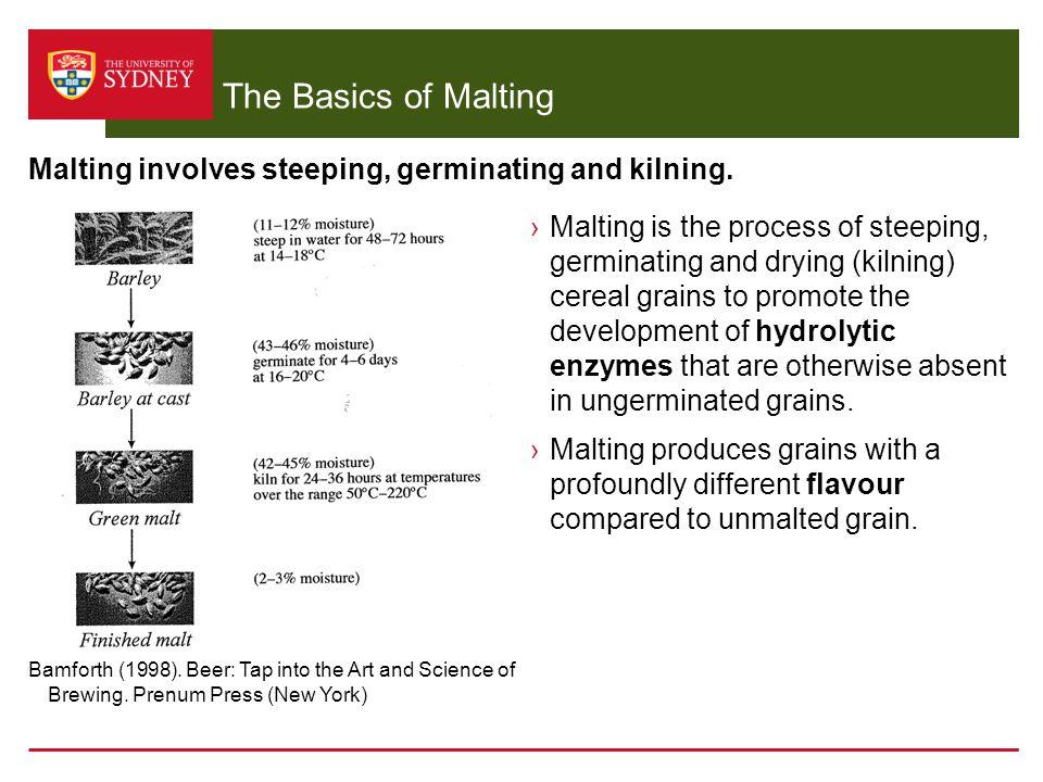 The Basics of Malting Malting involves steeping, germinating and kilning.