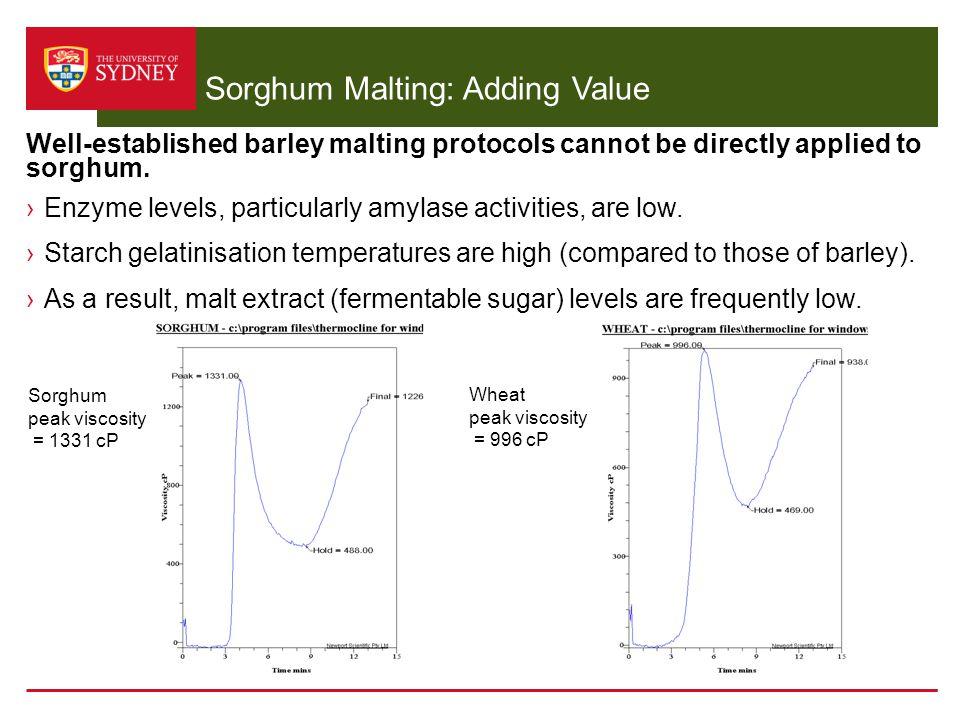 Sorghum Malting: Adding Value