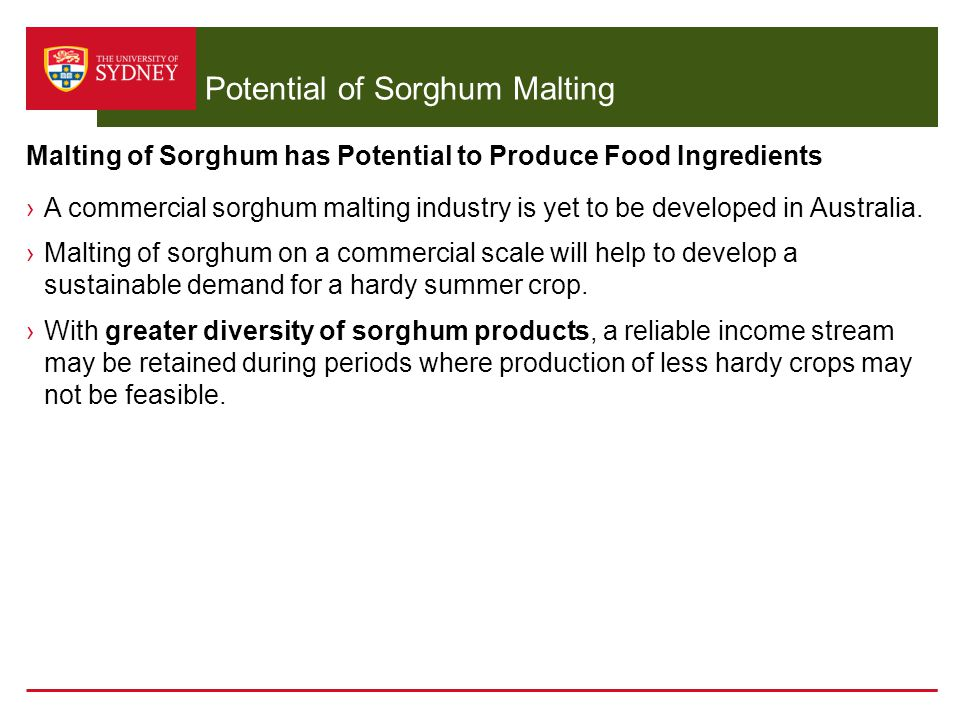 Potential of Sorghum Malting