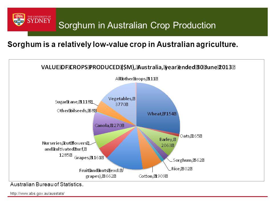 Sorghum in Australian Crop Production