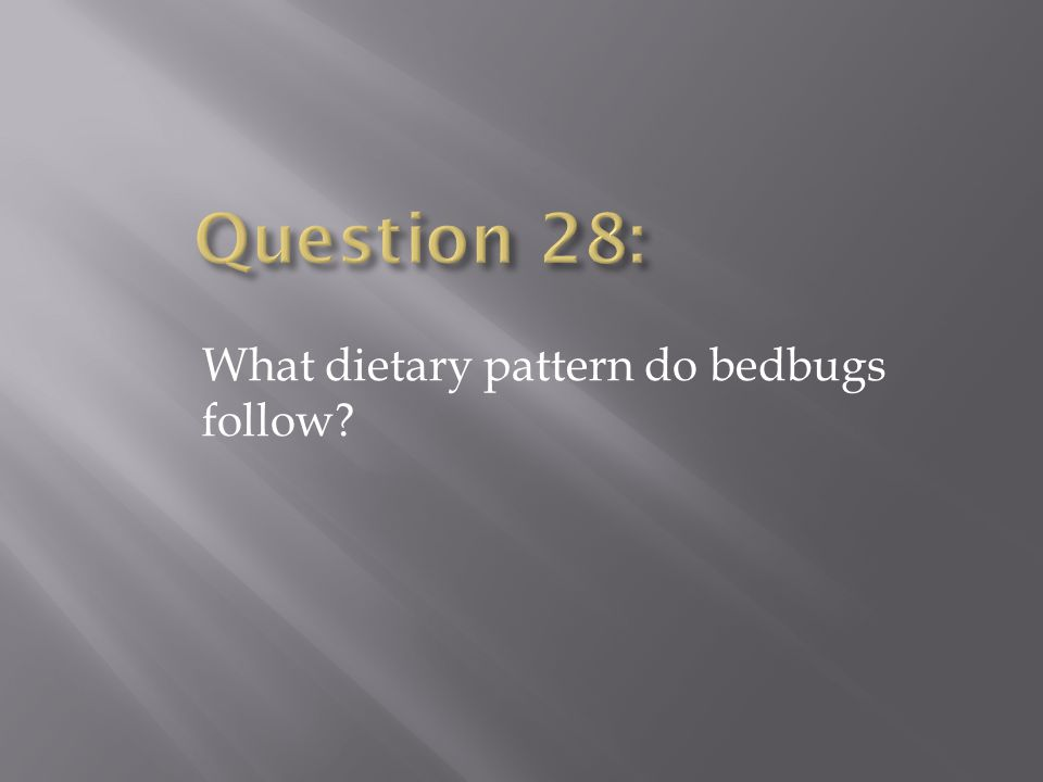 Question 28: What dietary pattern do bedbugs follow