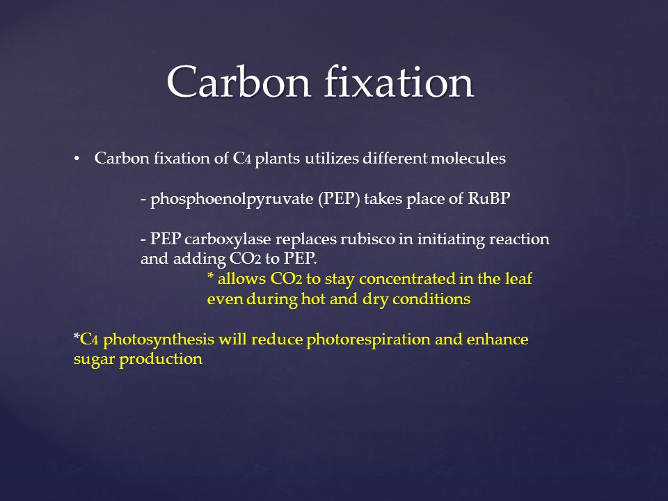 Carbon fixation Carbon fixation of C4 plants utilizes different molecules. - phosphoenolpyruvate (PEP) takes place of RuBP.