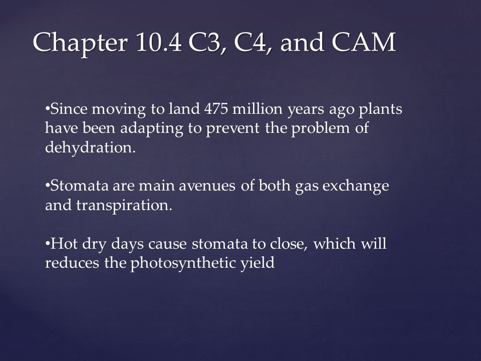 Chapter 10.4 C3, C4, and CAM Since moving to land 475 million years ago plants have been adapting to prevent the problem of dehydration.