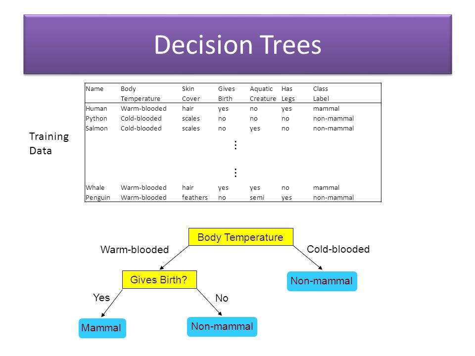 Decision Trees ⋮ ⋮ Training Data Body Temperature Warm-blooded