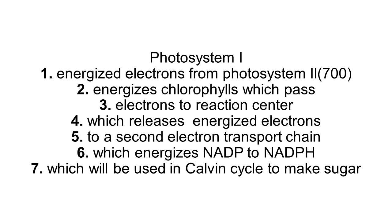Photosystem I 1. energized electrons from photosystem II(700) 2
