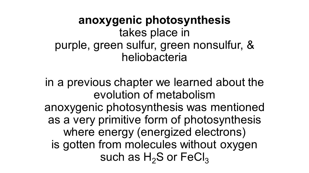 anoxygenic photosynthesis takes place in purple, green sulfur, green nonsulfur, & heliobacteria in a previous chapter we learned about the evolution of metabolism anoxygenic photosynthesis was mentioned as a very primitive form of photosynthesis where energy (energized electrons) is gotten from molecules without oxygen such as H2S or FeCl3