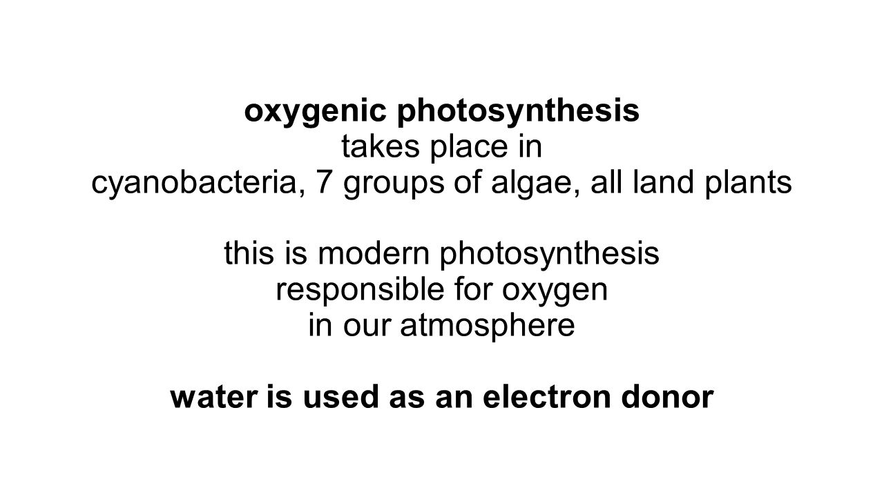 oxygenic photosynthesis takes place in cyanobacteria, 7 groups of algae, all land plants this is modern photosynthesis responsible for oxygen in our atmosphere water is used as an electron donor