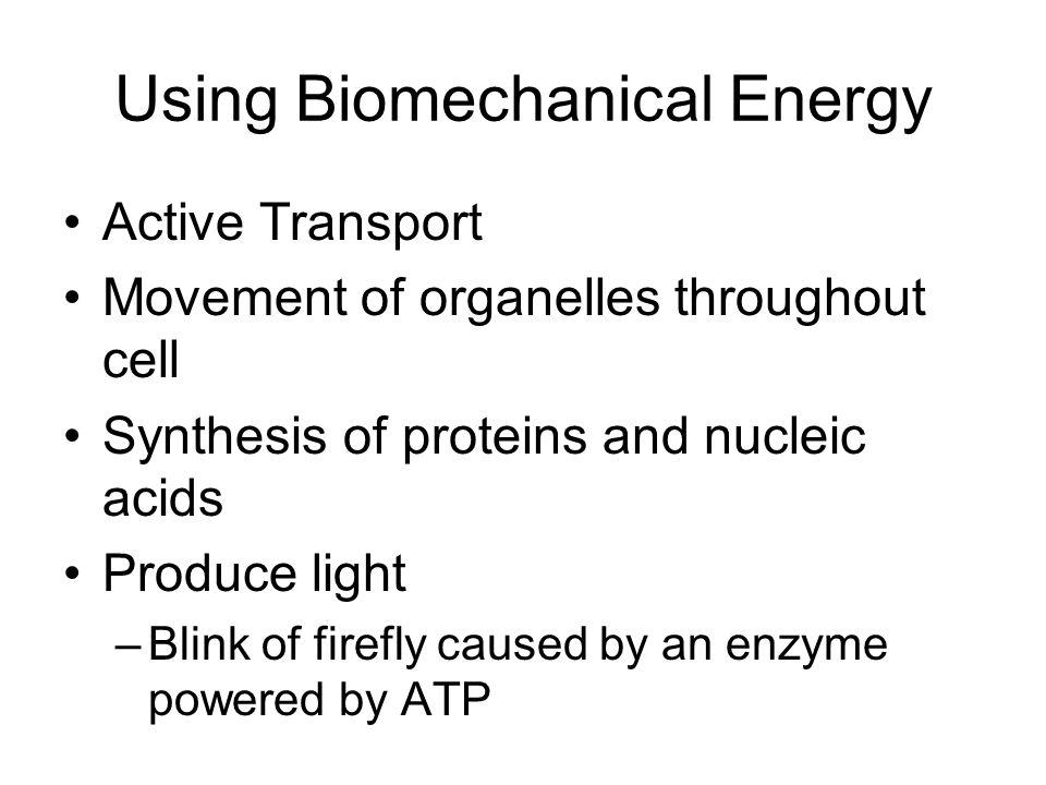Using Biomechanical Energy