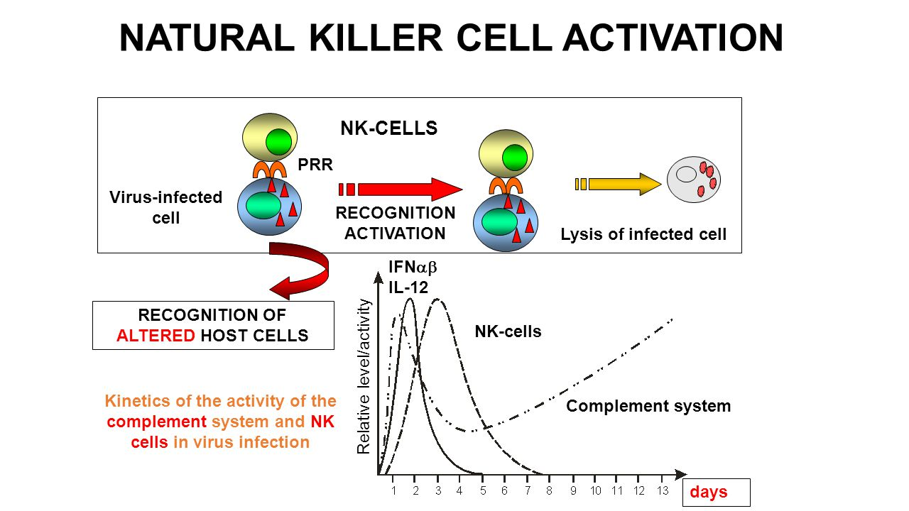 NATURAL KILLER CELL ACTIVATION