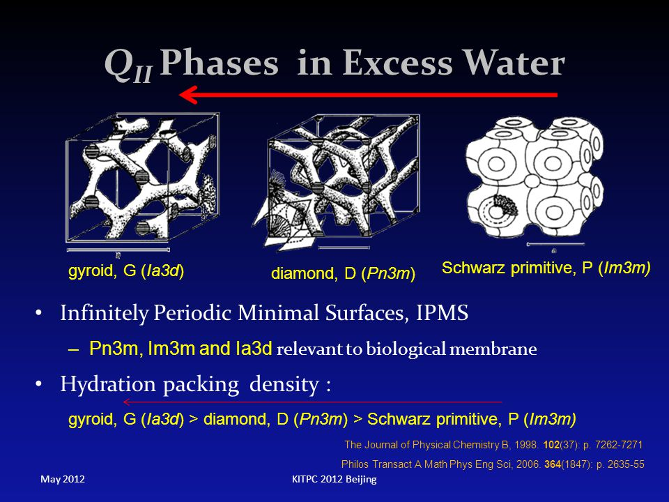 QII Phases in Excess Water