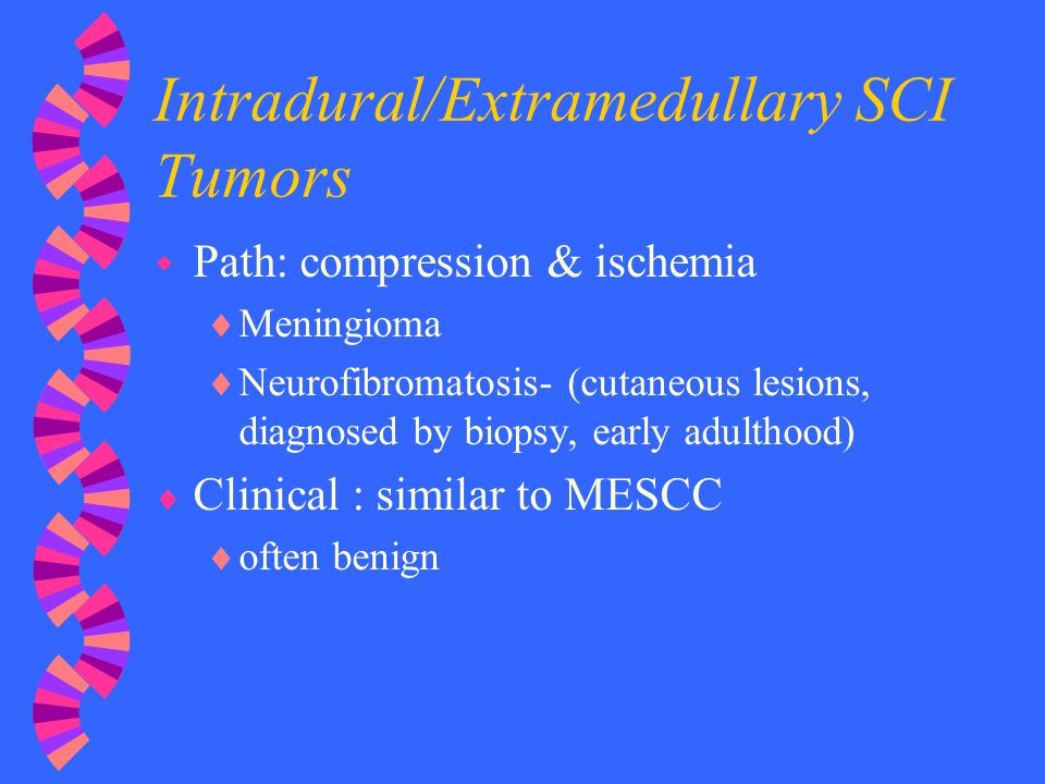 Intradural/Extramedullary SCI Tumors