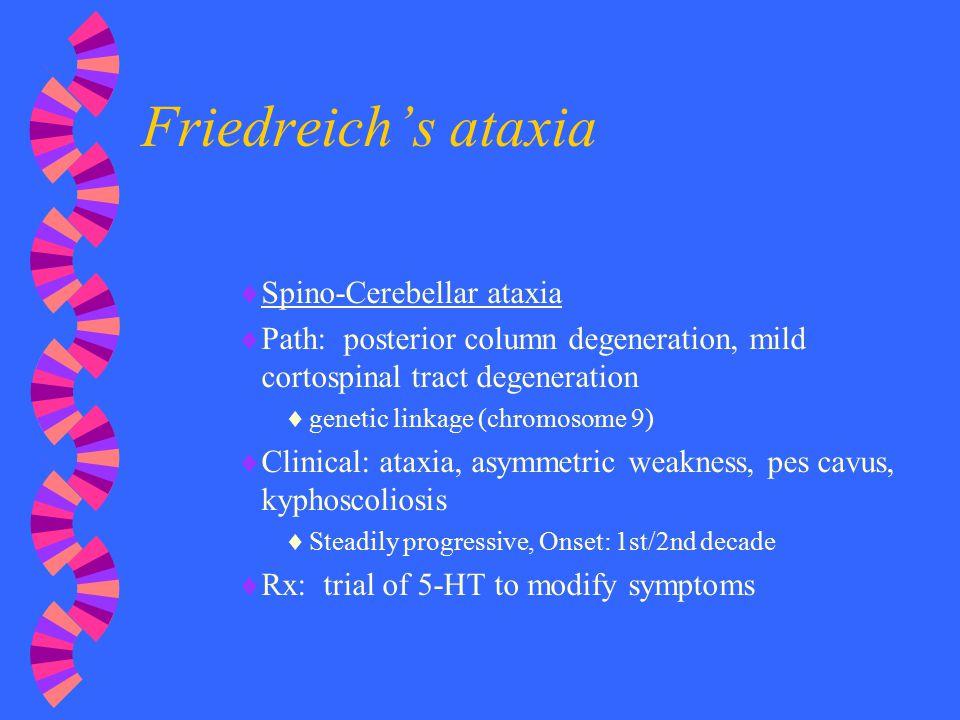 Friedreich's ataxia Spino-Cerebellar ataxia
