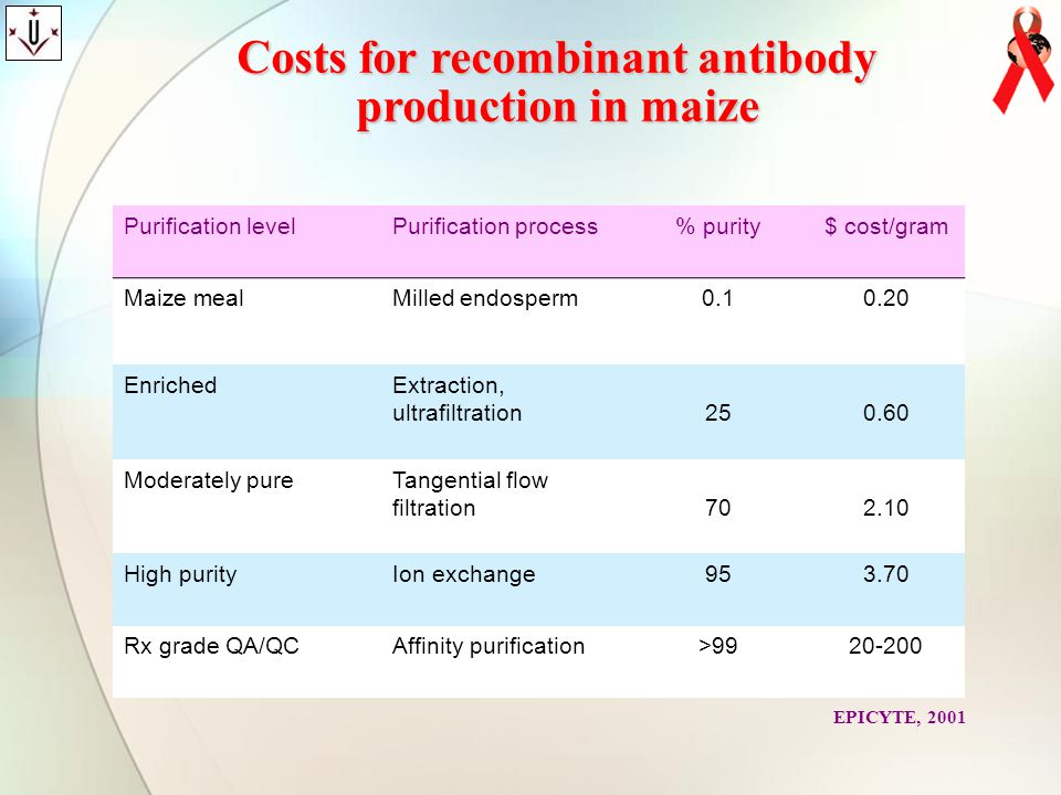 Costs for recombinant antibody production in maize