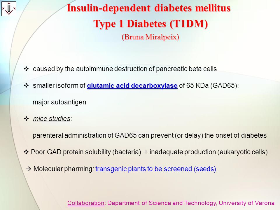 Insulin-dependent diabetes mellitus