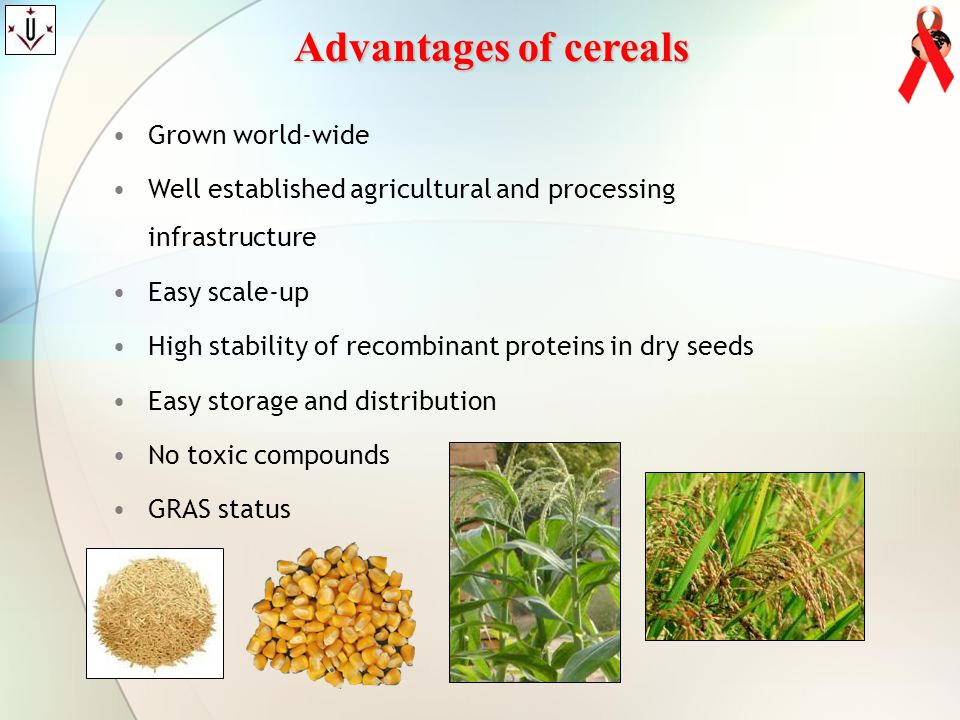 Advantages of cereals Grown world-wide