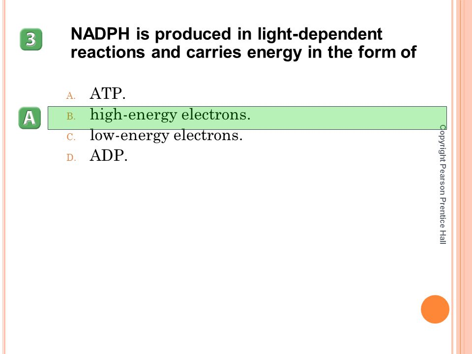 NADPH is produced in light-dependent reactions and carries energy in the form of