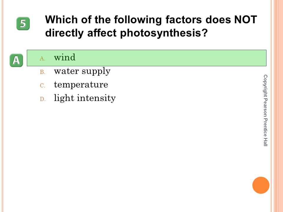 Which of the following factors does NOT directly affect photosynthesis