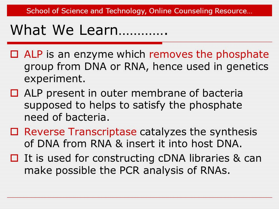 What We Learn…………. ALP is an enzyme which removes the phosphate group from DNA or RNA, hence used in genetics experiment.