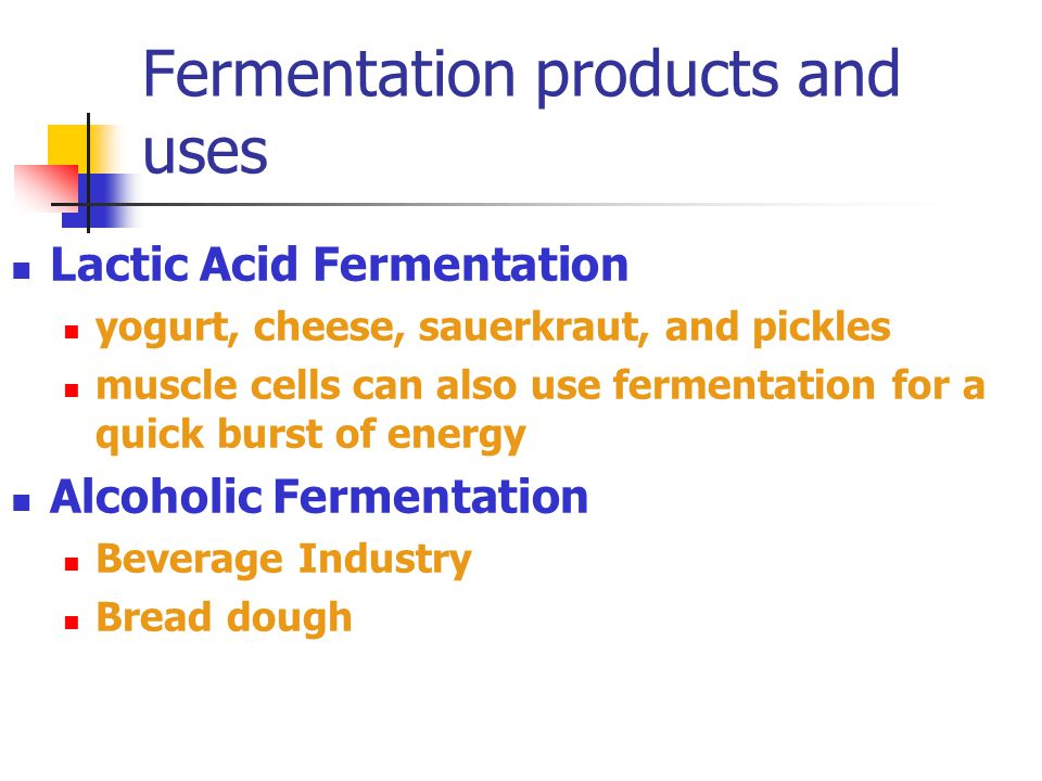 Fermentation products and uses