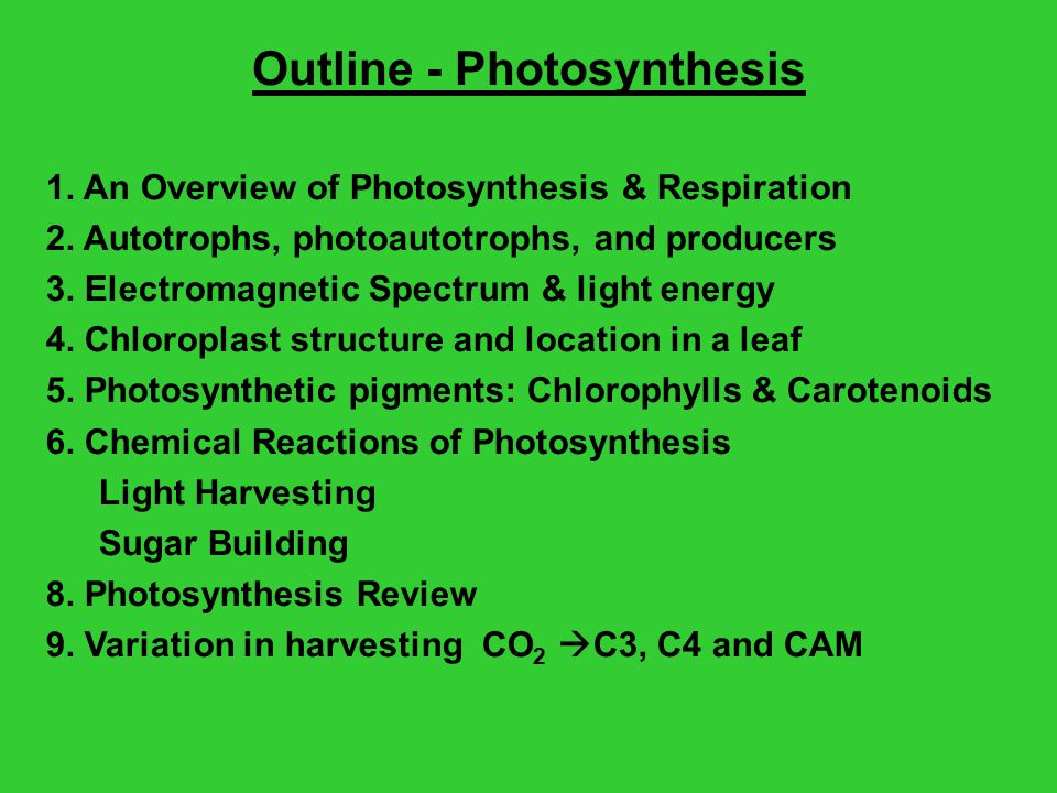 Outline - Photosynthesis