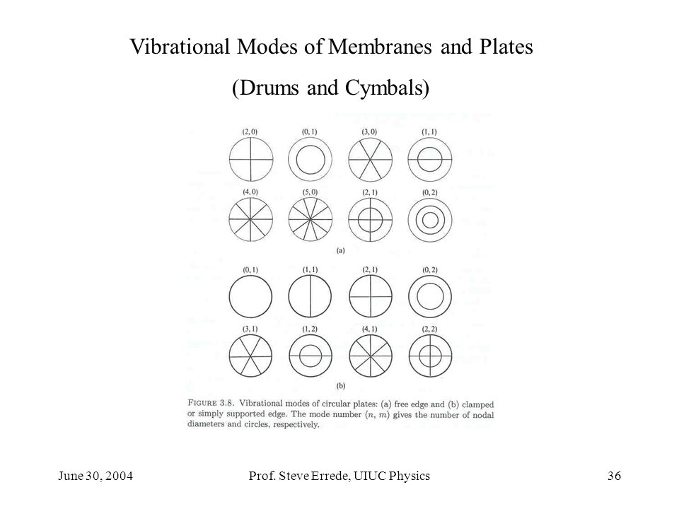 Vibrational Modes of Membranes and Plates (Drums and Cymbals)
