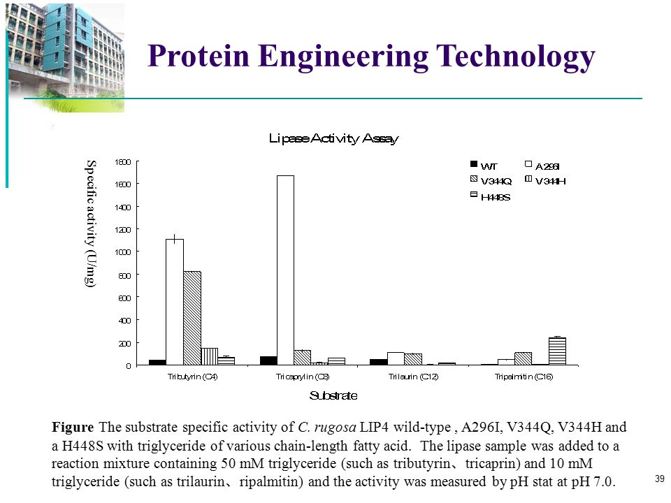 Protein Engineering Technology