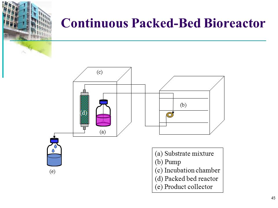 Continuous Packed-Bed Bioreactor