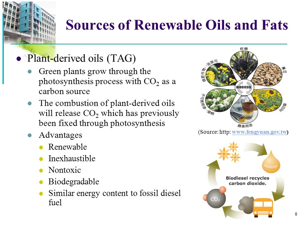 Sources of Renewable Oils and Fats