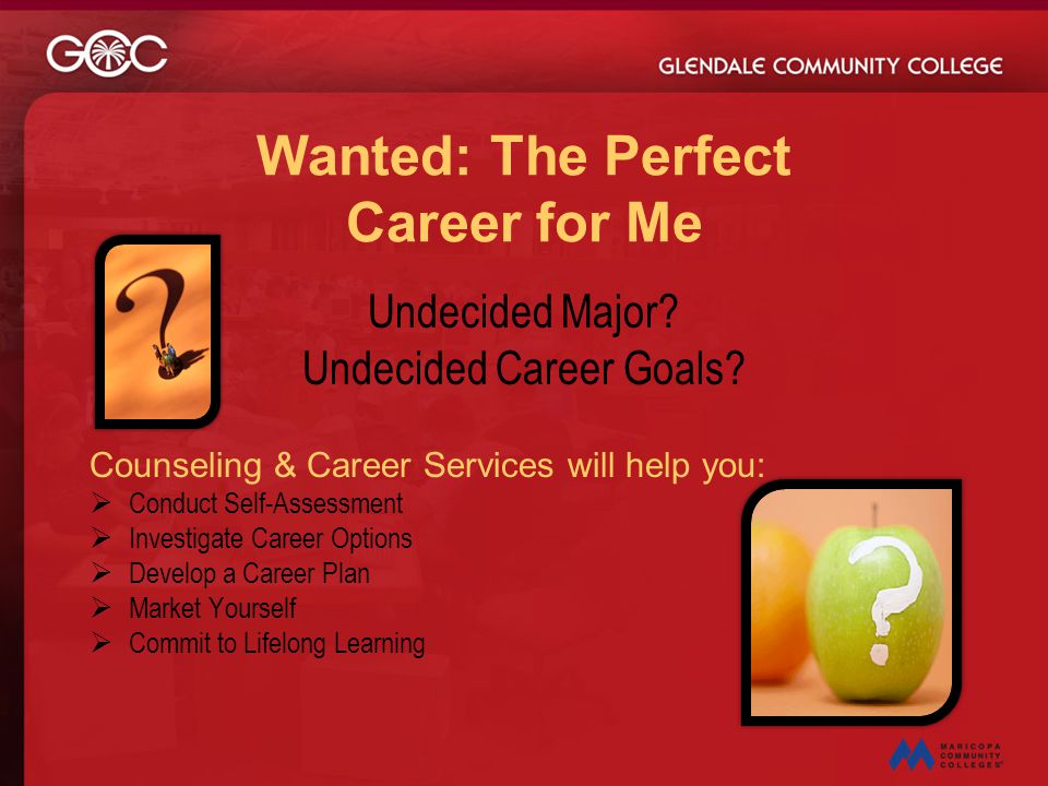 Wanted: The Perfect Career for Me