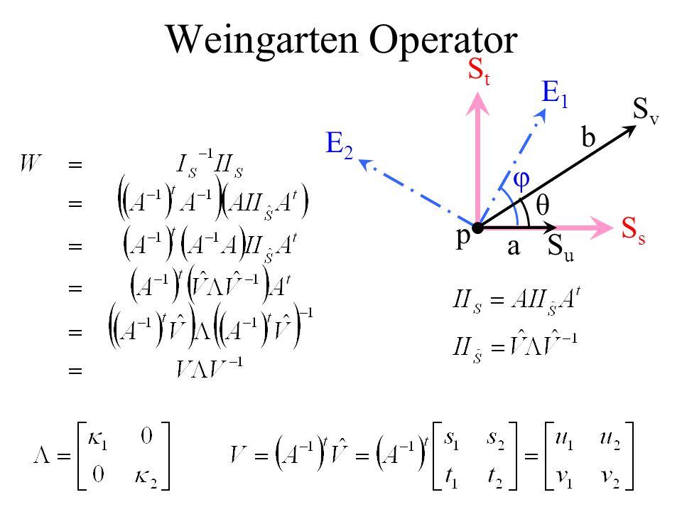 Weingarten Operator E1 E2 φ p Ss St Su Sv a b θ