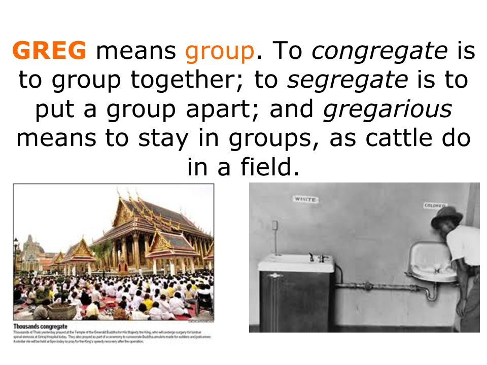GREG means group.