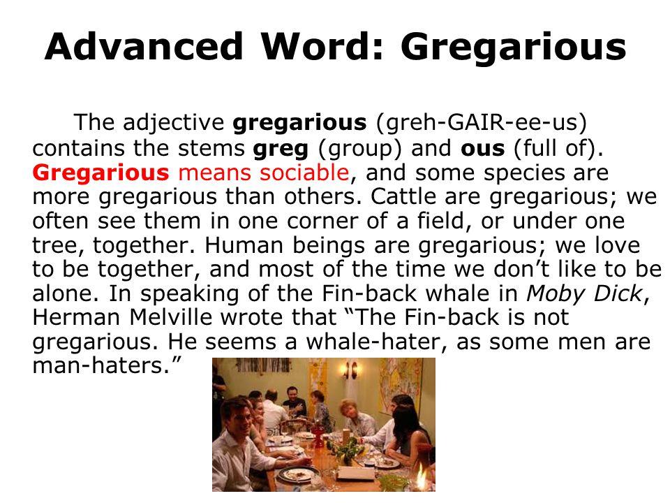 Advanced Word: Gregarious