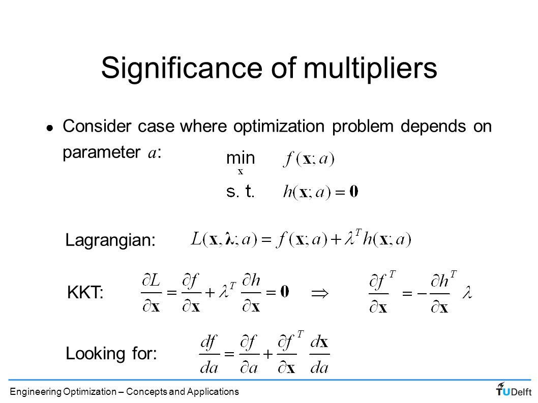Significance of multipliers