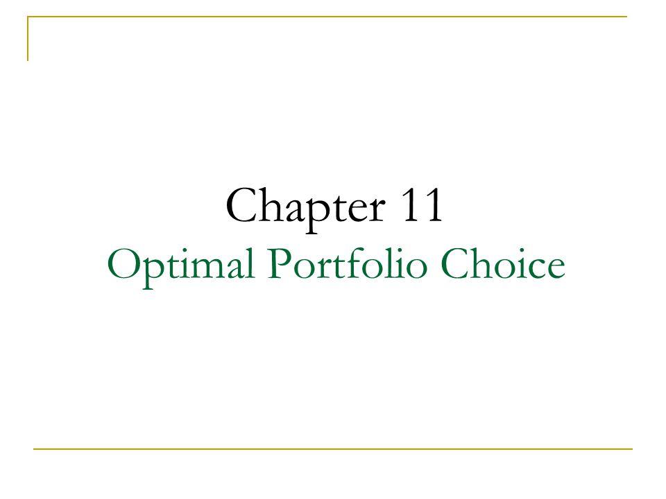 Chapter 11 Optimal Portfolio Choice