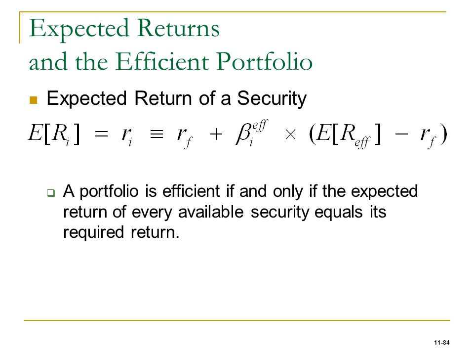 Expected Returns and the Efficient Portfolio