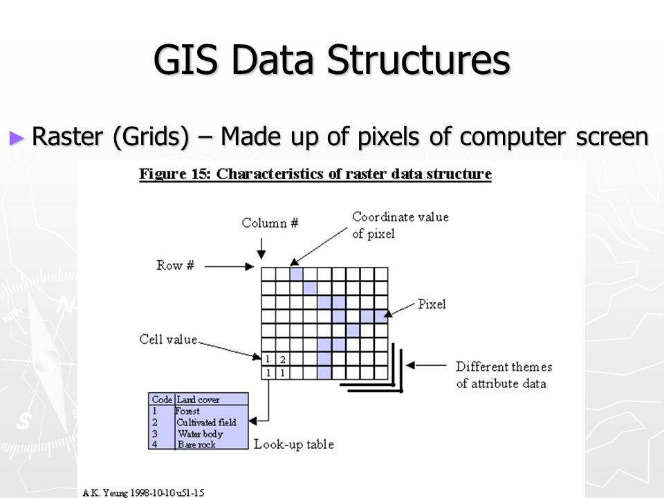 GIS Data Structures Raster (Grids) – Made up of pixels of computer screen
