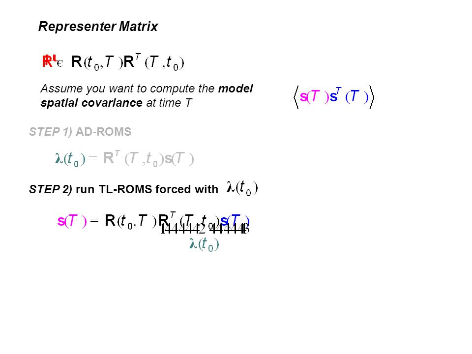 Representer Matrix Assume you want to compute the model spatial covariance at time T. STEP 1) AD-ROMS.