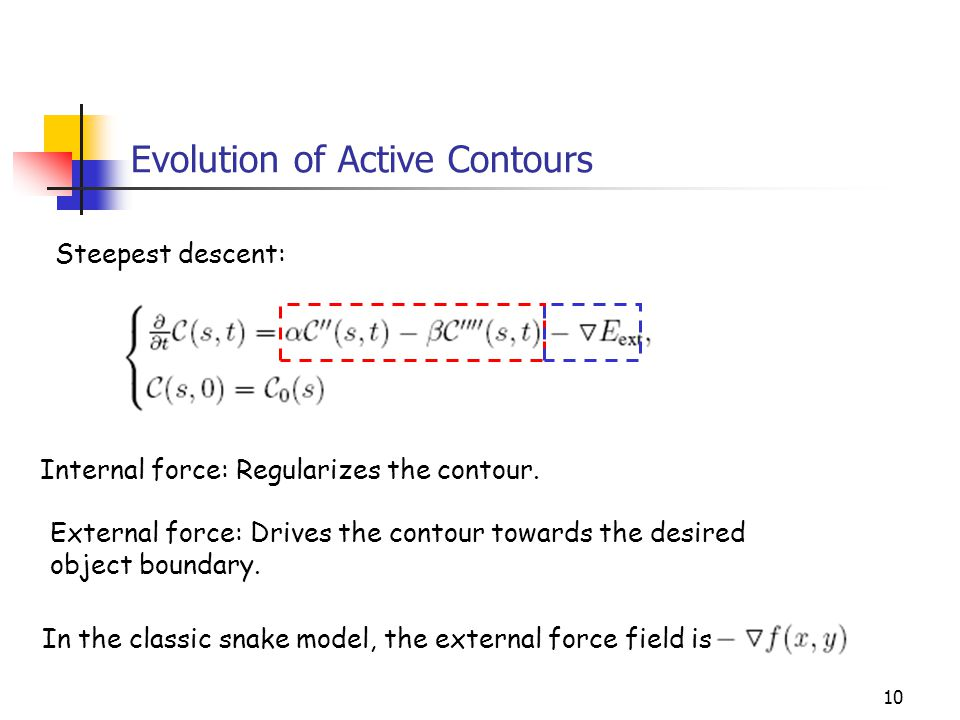 Evolution of Active Contours