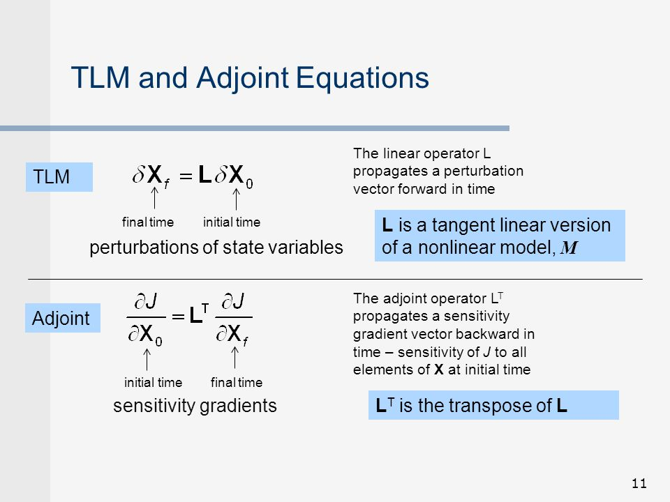 TLM and Adjoint Equations