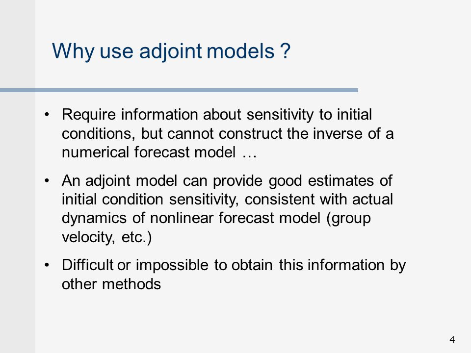Why use adjoint models