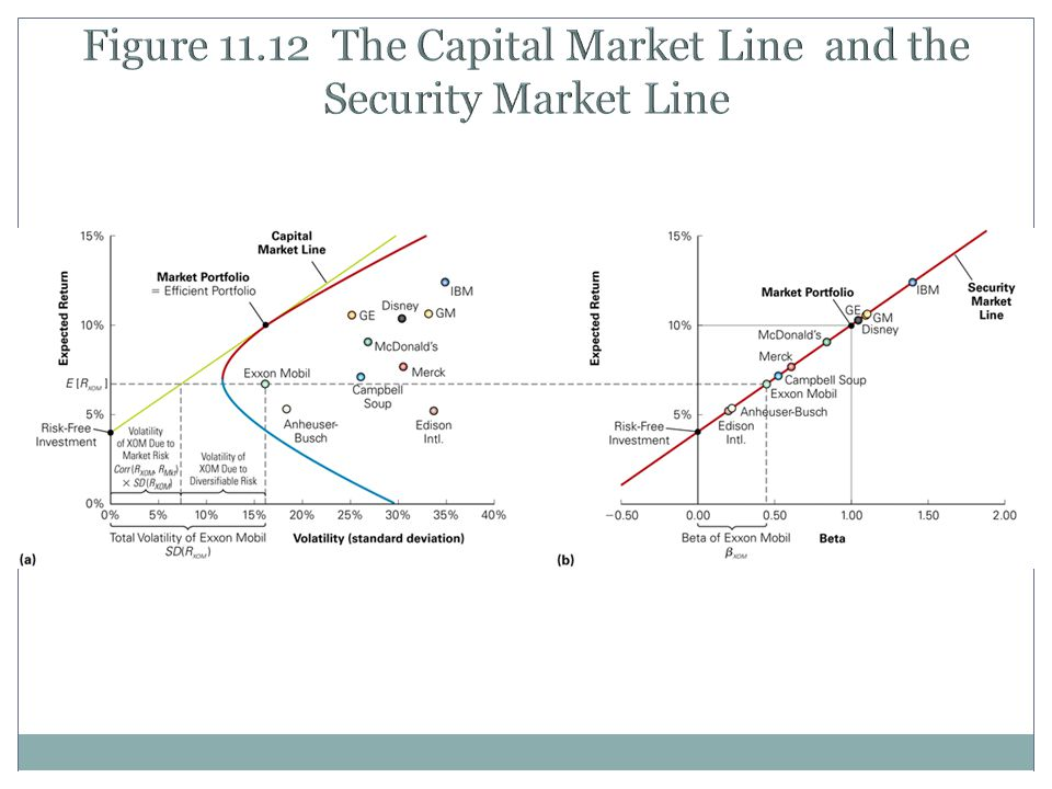 Figure 11.12 The Capital Market Line and the Security Market Line