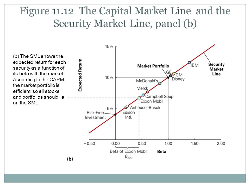 Figure 11.12 The Capital Market Line and the Security Market Line, panel (b)