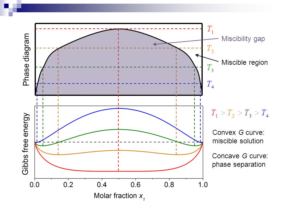 Phase diagram Gibbs free energy Miscibility gap Miscible region