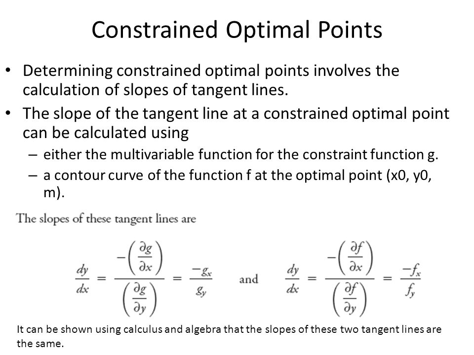 Constrained Optimal Points