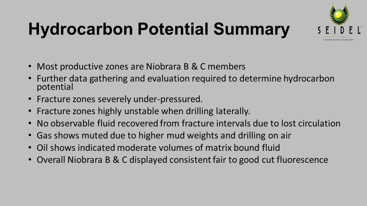 Hydrocarbon Potential Summary