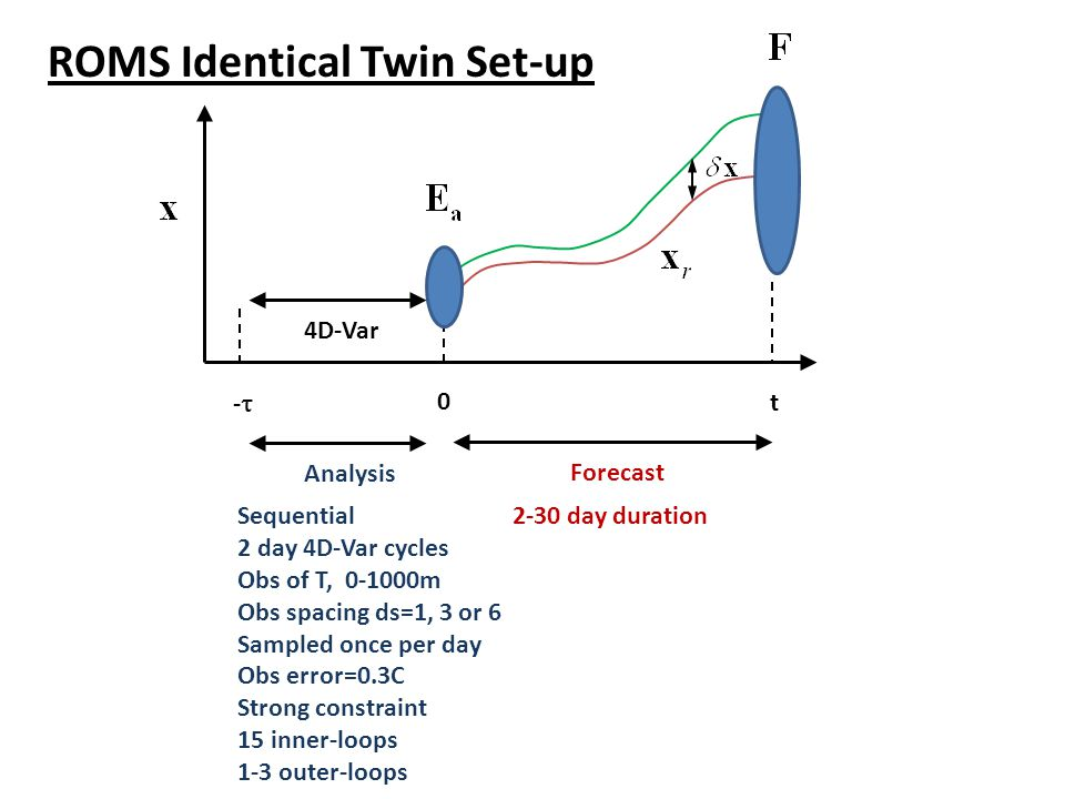 ROMS Identical Twin Set-up