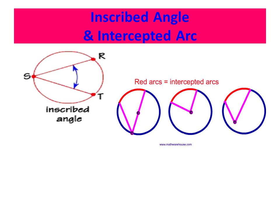 Inscribed Angle & Intercepted Arc